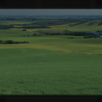 [Rolling cultivated fields]