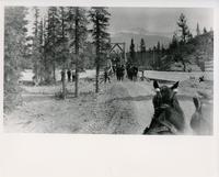 Crossing bridge at Banff National Park