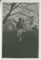 [Woman in a tree]