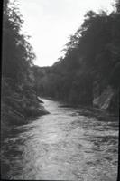 [River]
